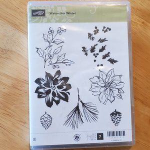 Stampin' Up! Watercolor Winter Stamp Set